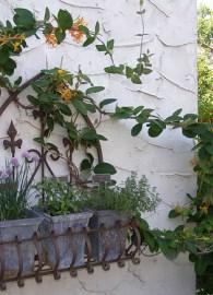 jardiniere-j19