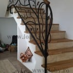 Balustrada fier forjat model natural inceput